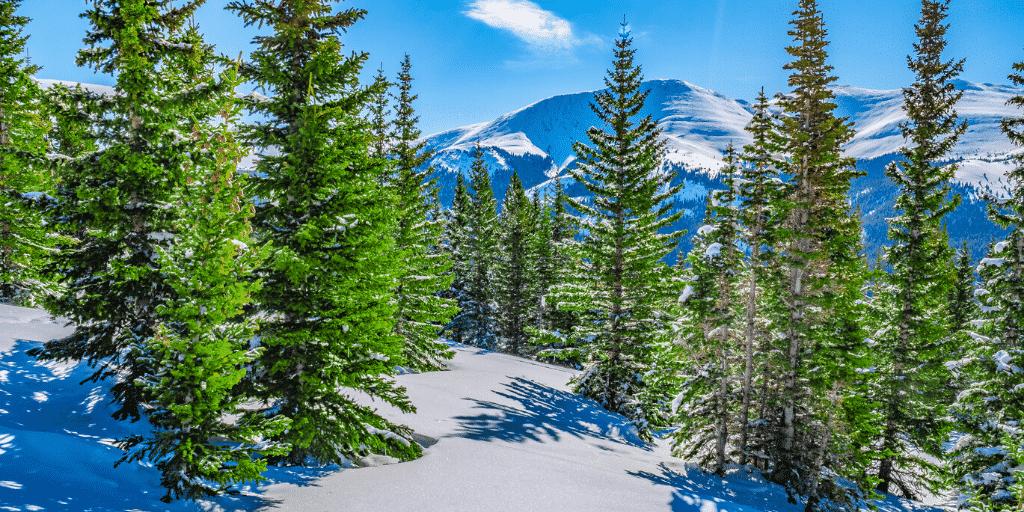 Hiking Quandary Peak in May